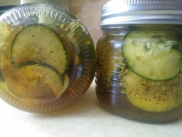 Bread & Butter Refrigerator Pickles